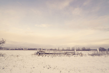 Wooden fence in a winter landscape