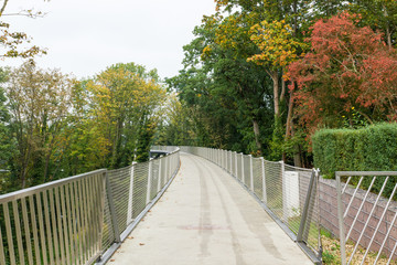 Brücke zwischen Bäumen