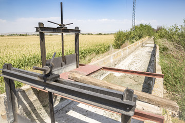 sluicegates on a dry irrigation watercourse canal and a field of corn
