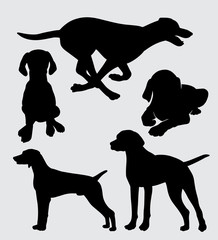 Vizsla dog animal action silhouette good use for symbol, logo, web icon, mascot, sticker, sign, or any design you want.