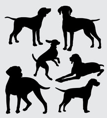 vizsla dog pet mammal animal silhouette good use for symbol, logo, web icon, mascot, sticker, sign, or any design you want.