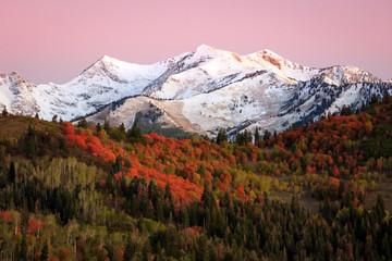 Wasatch autumn scene, Utah.