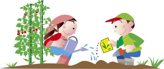 家庭菜園で野菜を作る子供達