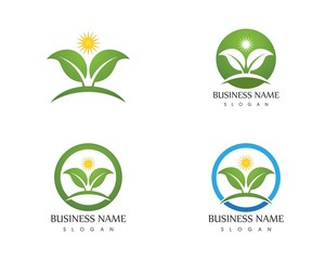 Nature leaf logo design template