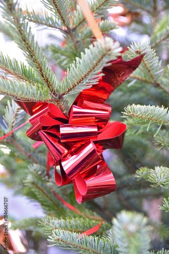 Ruban De Noël Rouge Dans Sapin Vert Stock Photo And Royalty Free