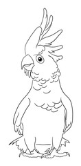 Cockatoo bird line art 04. Good use for symbol, logo, web icon, mascot, sign, coloring, or any design you want.