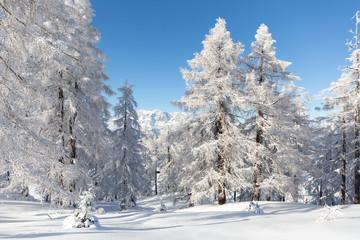 Fototapete - Alpenlandschaft
