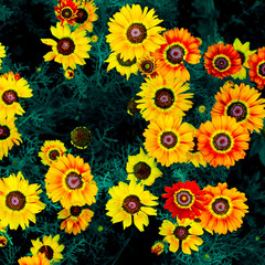 Yellow Floral background. greens. minimal