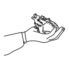 Hand holding a human heart vector illustration outline sketch hand drawn with black lines isolated on white background. Medical concept.