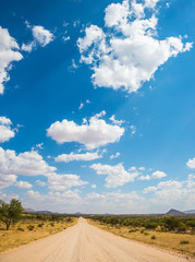 Dirt road in the savannah