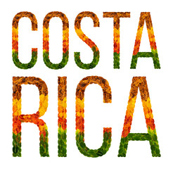 word costa rica country is written with leaves on a white insulated background, a banner for printing, a creative developing country colored leaves costa rica