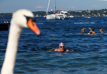 Swimmer Gewert arrives at Bains des Paquis after swimming a 70 km relay across Lake Leman from Montreux to Geneva in the time of 32 hours and 7 minutes in Geneva
