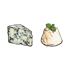 vector sketch wedge of soft blue cheese with mold and italian ricotta with basil leaf set for your design. Isolated illustration on a white background.