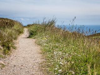 Countryside path, Scottish Highlands