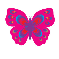 Flat vector image of a butterfly. Beautiful butterfly isolated on white background. Illustration for designer