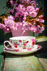 Beautiful, English, vintage teacup with Japanese cherry tree blossoms, close upt
