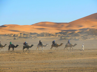 Poster de jardin Desert de sable désert de Merzouga