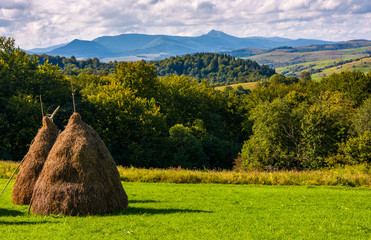 haystack on gcountrysiderassy lawn on hillside. ecology agricultural concept. Location near Pikui mountain, Transcarpathian region, Ukraine