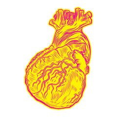 Heart in flesh tattoo concept. Anatomic human heart Symbol of love, Valentine's day heart t-shirt design. Vector.