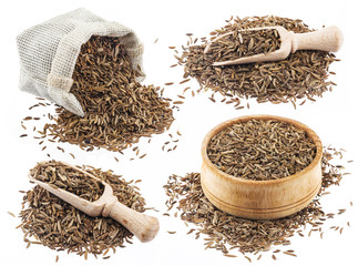 Cumin or caraway seeds isolated on white background. Collection
