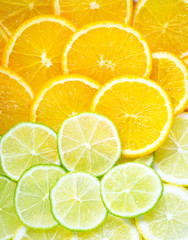 Colorful and healthy citrus fruit as a background