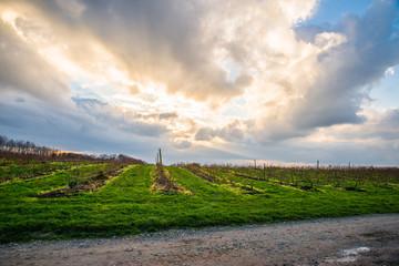Beautiful countryside landscape in west Germany, North Rhine-Westphalia