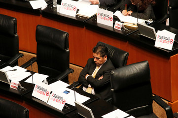 Senator Guzman of the Party of the Democratic Revolution is seen during a discussion of the Law of Internal Security in Mexico City