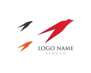 Bird wing Logo Template