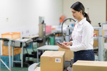 female warehouse worker checking delivering boxes. distribution center. logistics concept.