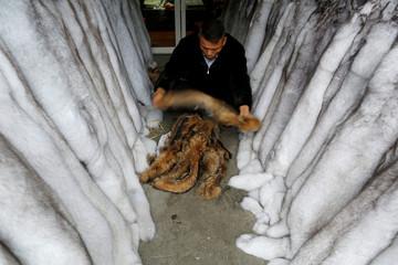 Man checks raccoon fur at a fur market in Chongfu, Zhejiang province