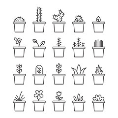 Set floral plants and blooming cactus in pots isolated on white background