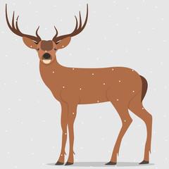 Deer, simple vector illustration. Hand drawn reindeer.