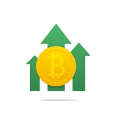 Bitcoin price rising vector