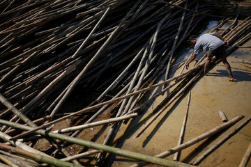 Rohingya refugee selects a bamboo branch at the Balukhali refugee camp near Cox's Bazar
