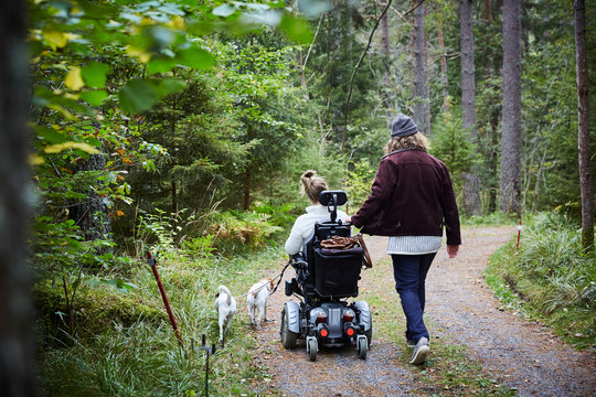 Rear view of male caretaker with disabled woman and dog in forest