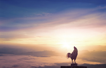 World environment day concept: Silhouette rooster on blurred beautiful mountain sunrise sky background.