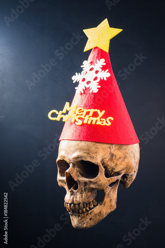 Human Skull Wearing A Red Flannel Hat That Has A Phrase Merry