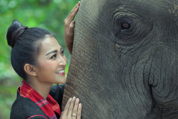 Beautiful Thai woman in local heritage dressing is smiling to Thai elephant in the jungle in Surin, Thaialnd.