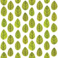 Illustration of leaves pattern