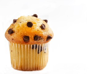 Single chocolate chip muffin isolated on white with copy space
