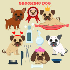 Dog grooming  salon. Tools  for grooming. Cute pug puppy and French bulldog.The grooming services elements. Vector illustration. Flat style.