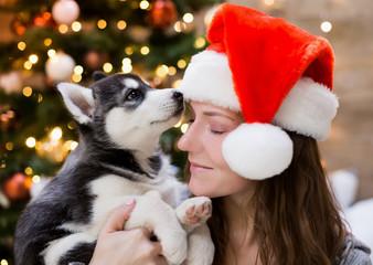 Irina. Woman and puppy husky, Christmas tree, hat, close up