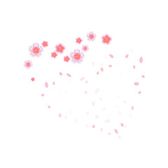 Pink flying flowers and petals isolated on white background. Sakura flowers. Heart of petals and flowers. Vector