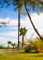 Turkey,  hammock in tropical garden