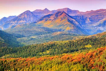 Wall Murals Purple Autumn morning on Timp, Utah, USA.