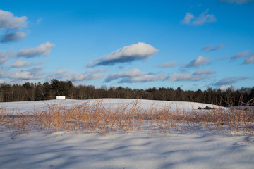 Farm field covered by snow under a beautiful blue sky