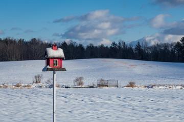 Red wooden birdfeeder under the snow