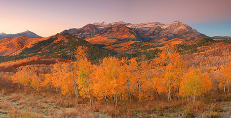 Autocollant pour porte Orange eclat Fall landscape in the Wasatch Mountains, Utah, USA.