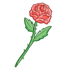 Funny and cool rose with torn - vector.
