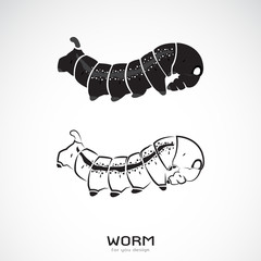 Vector of two caterpillar on white background. Icon Worm. Insect.